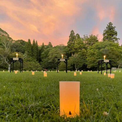20210805なら燈花会三社寺の火